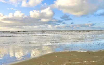 Texel in de winter